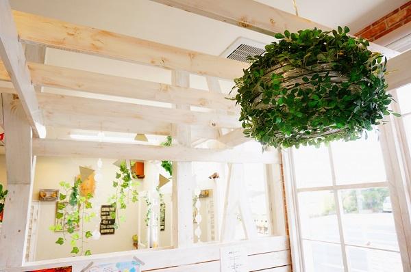 6.インテリアグリーンのおしゃれな取り入れ方。自分らしく植物を楽しむ_2
